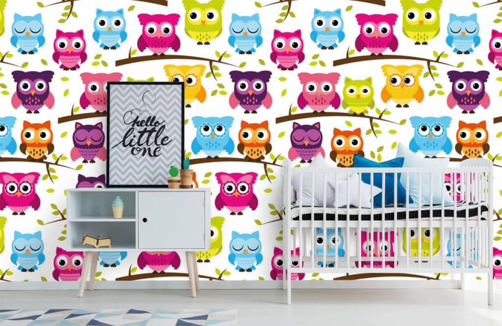 Papier peint oiseaux - Gekleurde uiltjes - Chambre de bébé 1