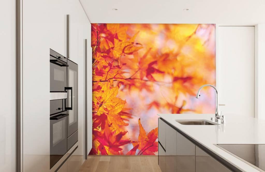 Leaves - Feuilles d'automne - Chambre à coucher 3