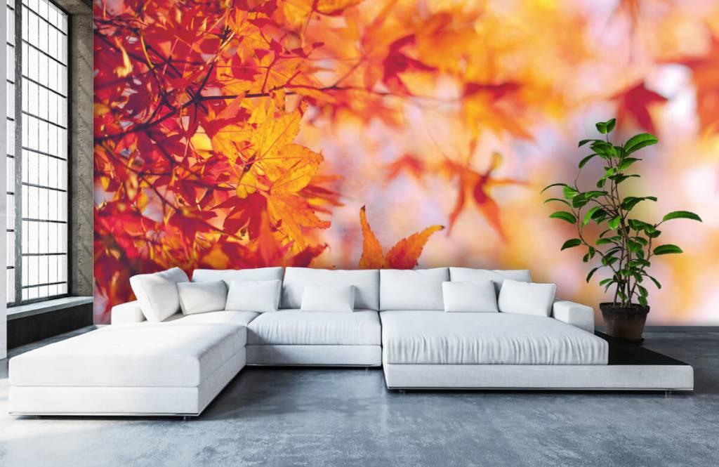 Leaves - Feuilles d'automne - Chambre à coucher 5