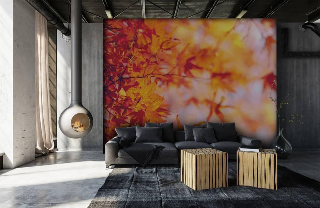 Leaves - Feuilles d'automne - Chambre à coucher 6