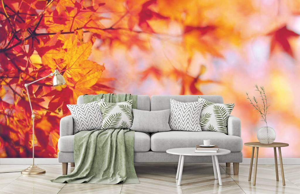 Leaves - Feuilles d'automne - Chambre à coucher 7