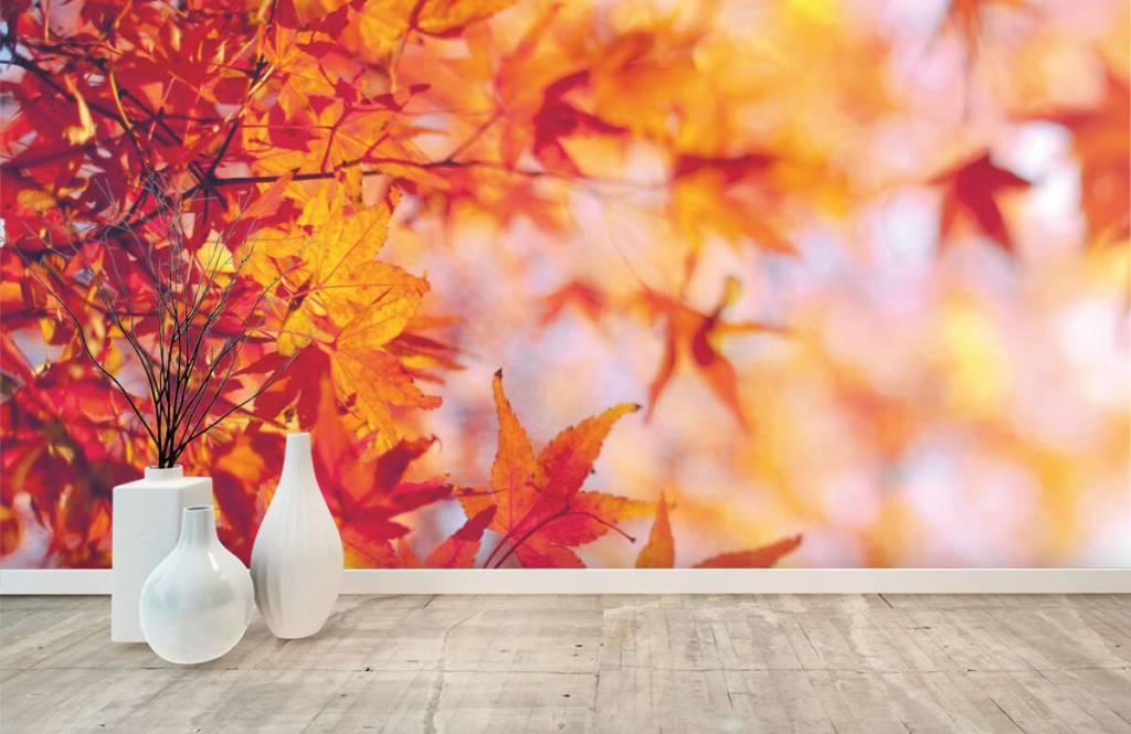 Leaves - Feuilles d'automne - Chambre à coucher 8