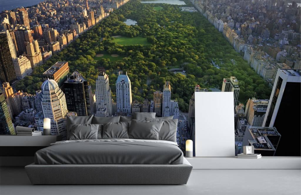 Papier peint Villes - Central Park - Chambre à coucher 5