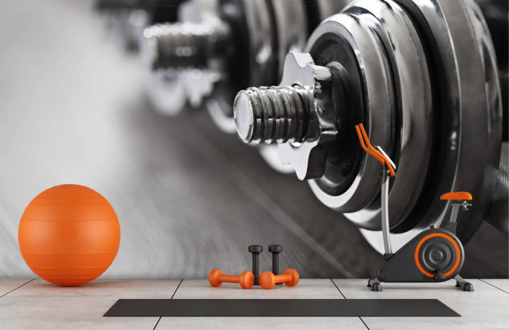 Fitness - Haltères classiques - Chambre d'hobby 1
