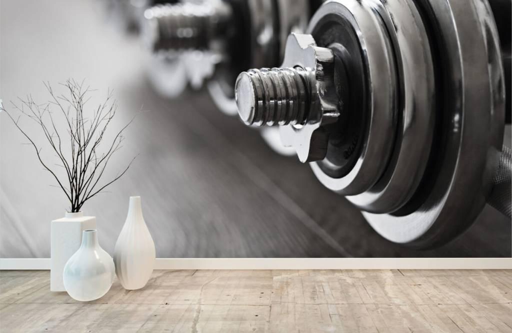 Fitness - Haltères classiques - Chambre d'hobby 9