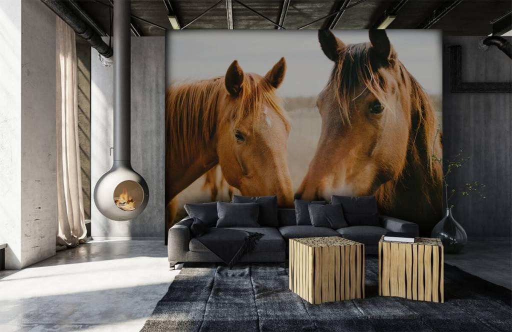 Horses - Deux chevaux - Chambre des enfants 6