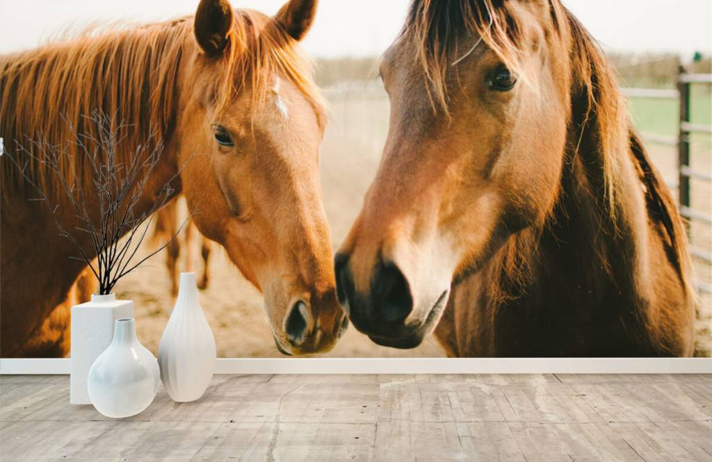 Horses - Deux chevaux - Chambre des enfants 8