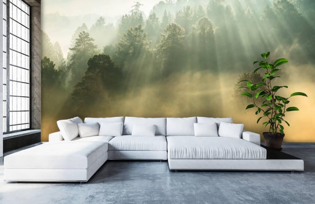 Papier peint Paysage - Lever de soleil entre les collines - Chambre à coucher 1
