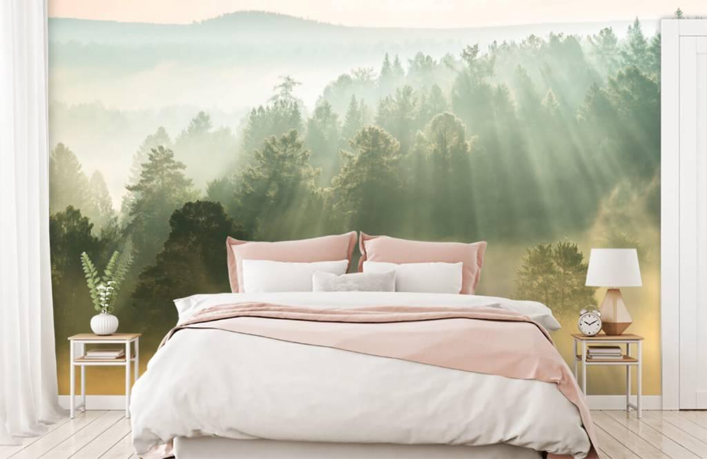 Papier peint Paysage - Lever de soleil entre les collines - Chambre à coucher 2