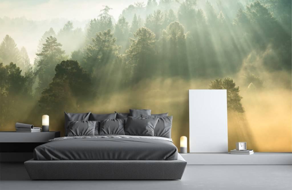 Papier peint Paysage - Lever de soleil entre les collines - Chambre à coucher 3