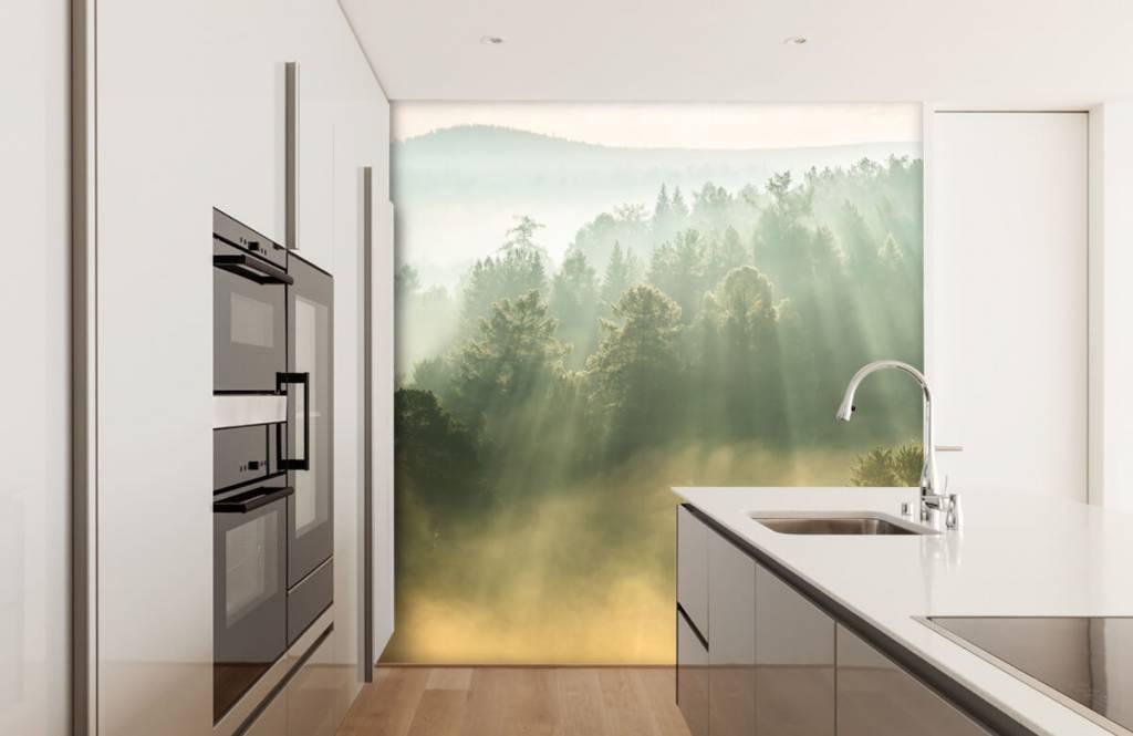Papier peint Paysage - Lever de soleil entre les collines - Chambre à coucher 4