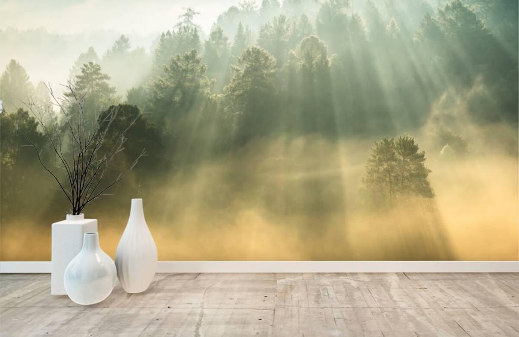 Papier peint Paysage - Lever de soleil entre les collines - Chambre à coucher 8
