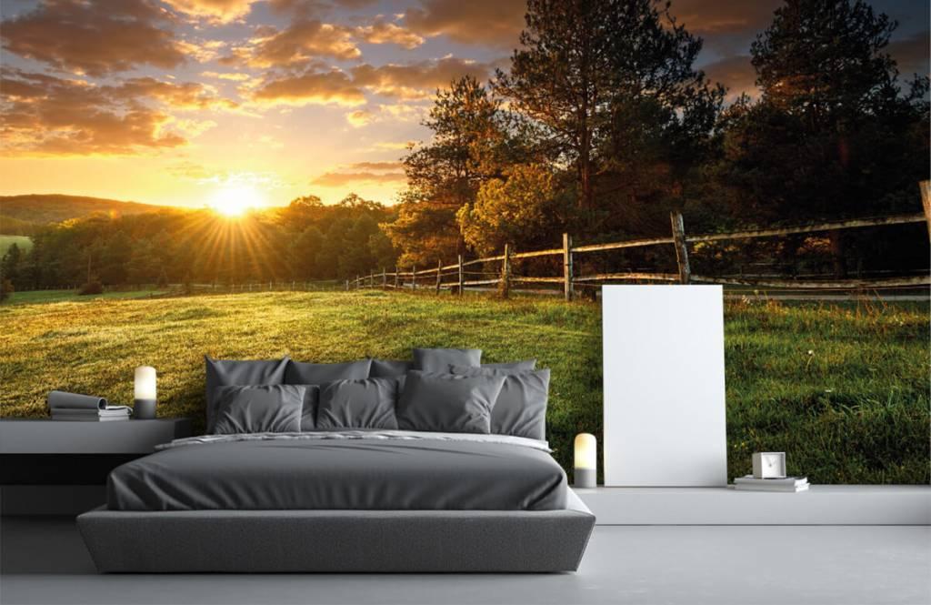 Papier peint Paysage - Pâturage au coucher du soleil - Chambre à coucher 1