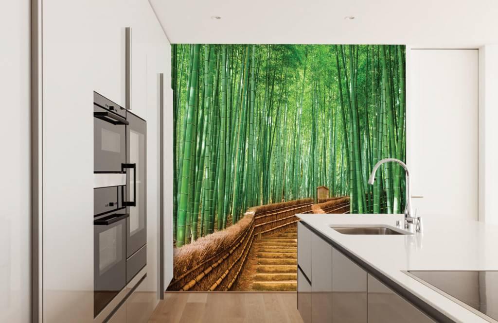 Papier peint Paysage - Escalier entre les plantes de bambou - Salle de séjour 1