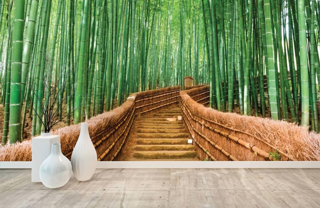 Papier peint Paysage - Escalier entre les plantes de bambou - Salle de séjour 4