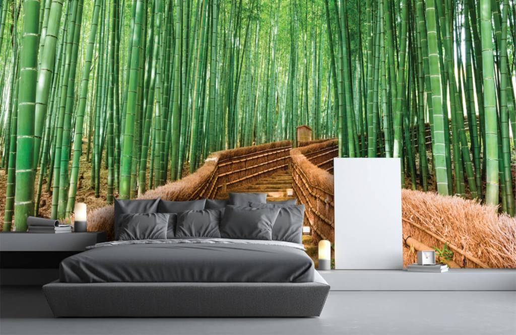 Papier peint Paysage - Escalier entre les plantes de bambou - Salle de séjour 5