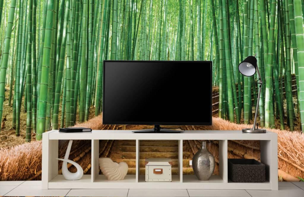 Papier peint Paysage - Escalier entre les plantes de bambou - Salle de séjour 6