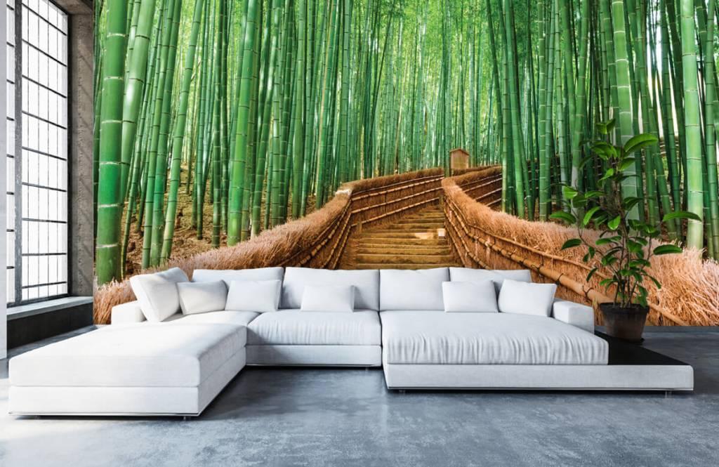 Papier peint Paysage - Escalier entre les plantes de bambou - Salle de séjour 7