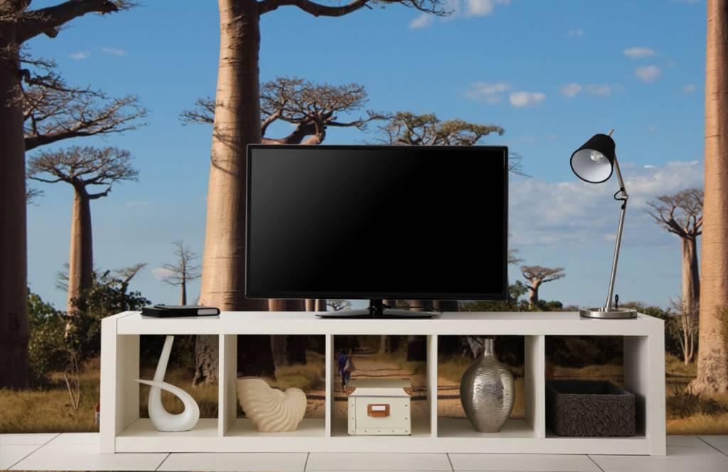 Papier peint Paysage - Baobabs - Salle de séjour 6