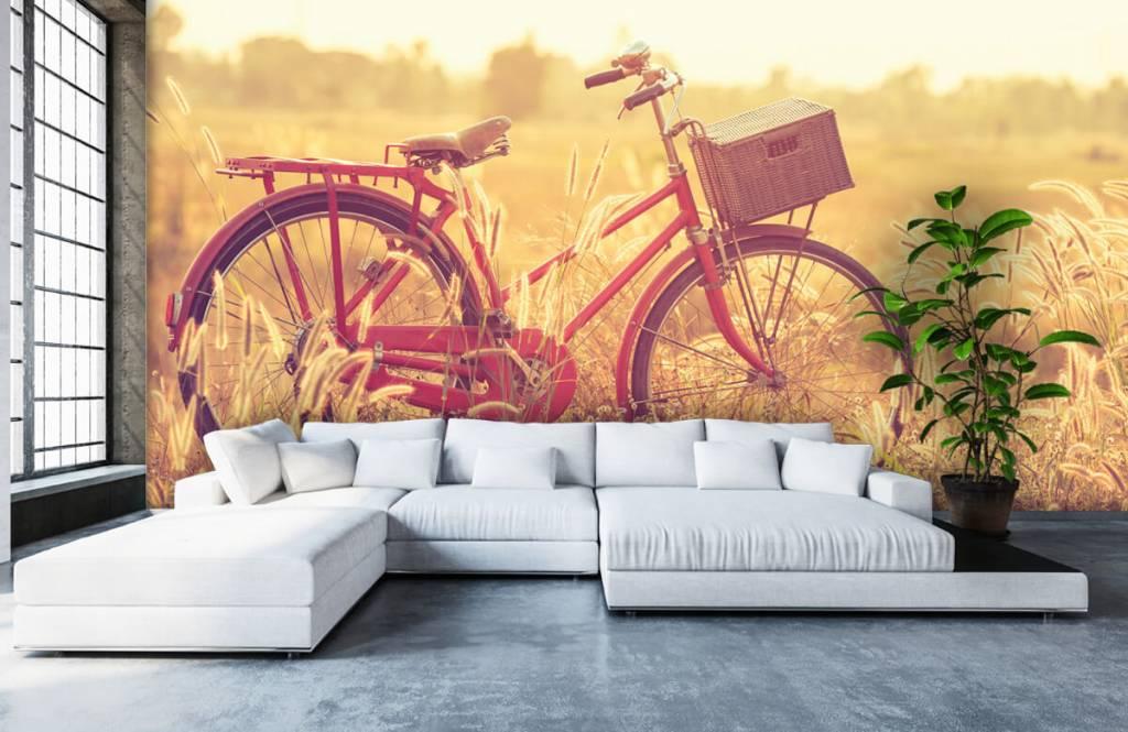 Papier peint Paysage - Vélo d'époque - Chambre à coucher 5