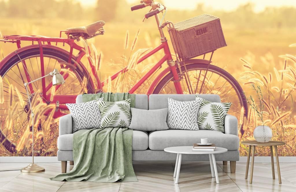Papier peint Paysage - Vélo d'époque - Chambre à coucher 7