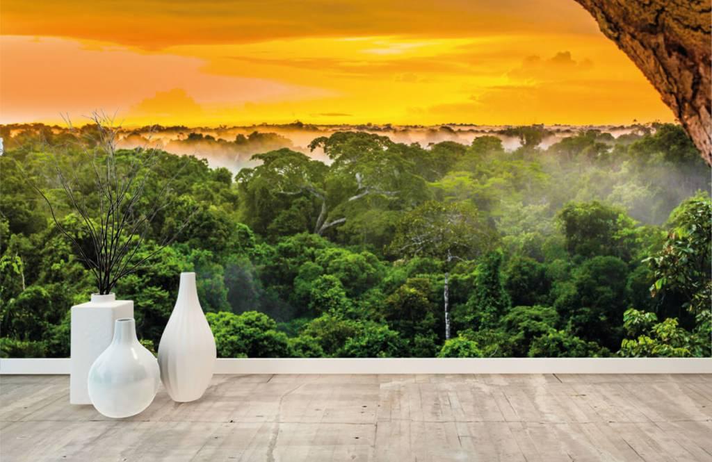 Arbres - Forêt tropicale au Brésil - Chambre à coucher 1