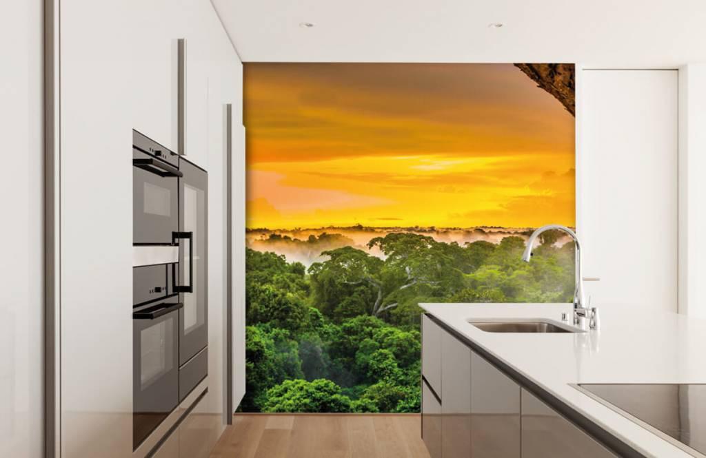 Arbres - Forêt tropicale au Brésil - Chambre à coucher 3