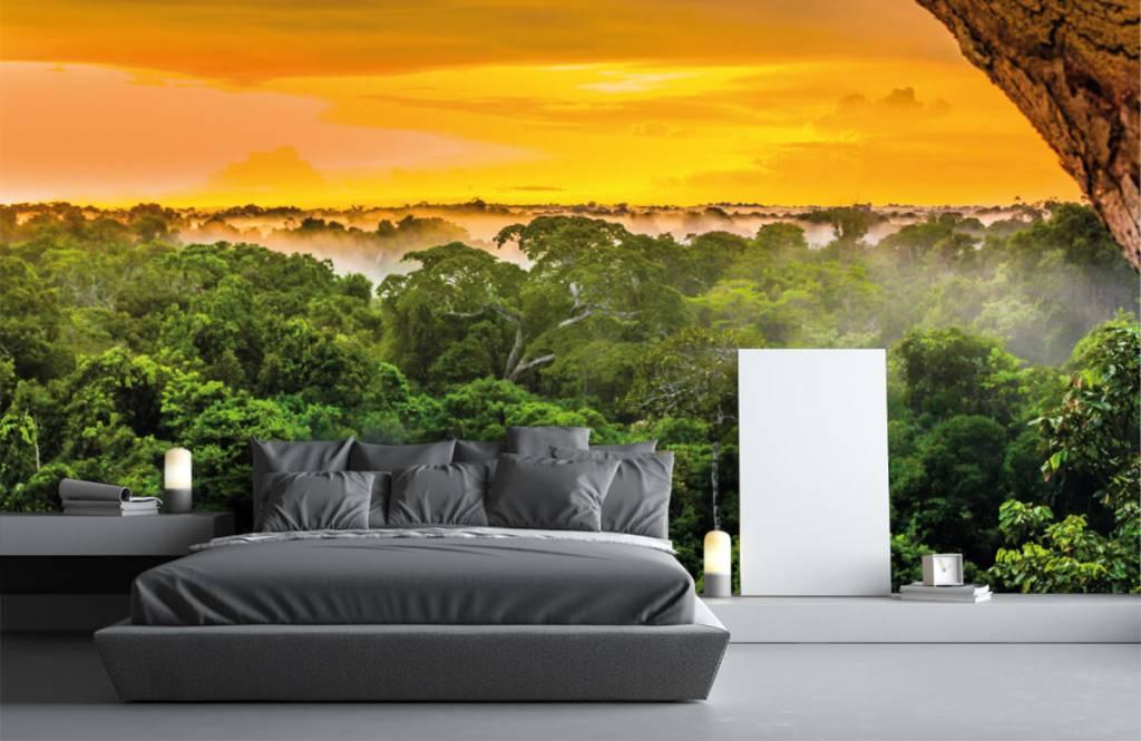 Arbres - Forêt tropicale au Brésil - Chambre à coucher 4