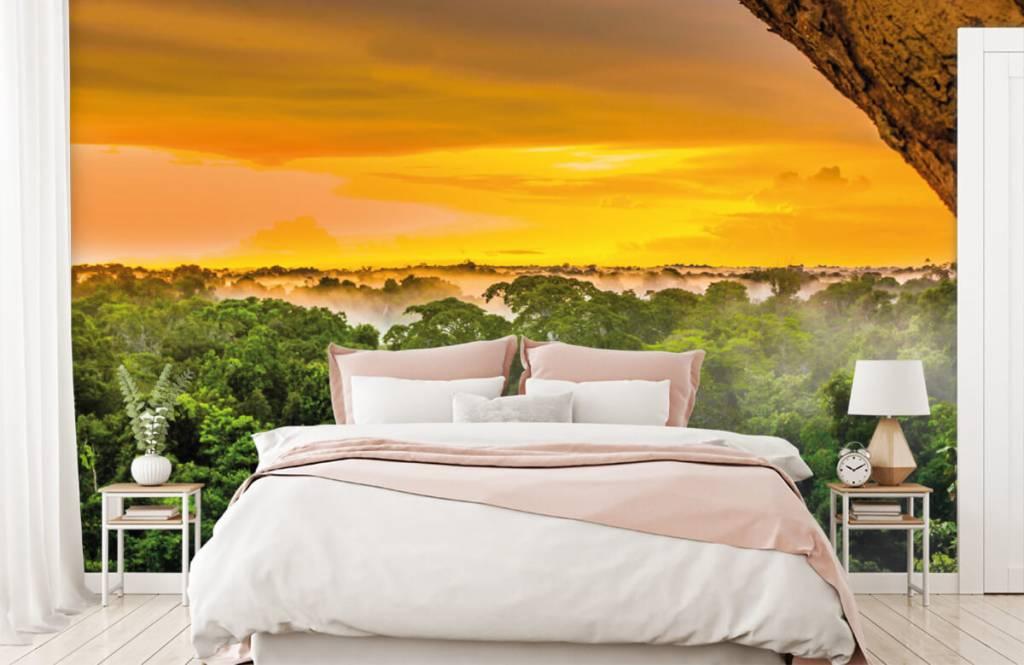 Arbres - Forêt tropicale au Brésil - Chambre à coucher 5