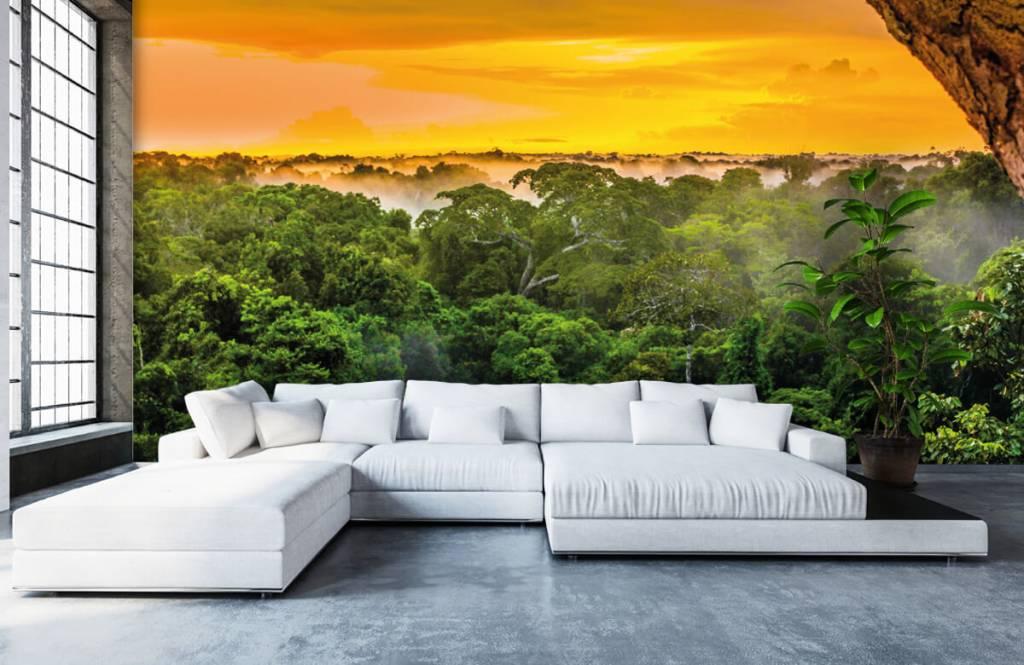 Arbres - Forêt tropicale au Brésil - Chambre à coucher 6
