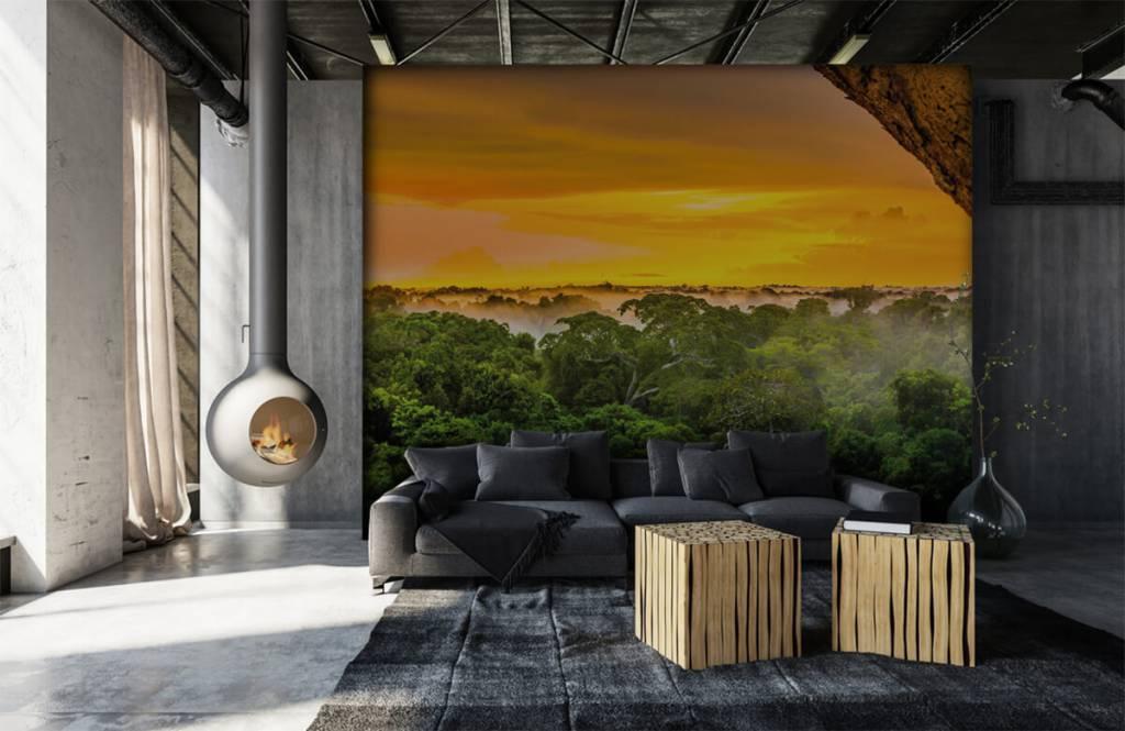 Arbres - Forêt tropicale au Brésil - Chambre à coucher 7