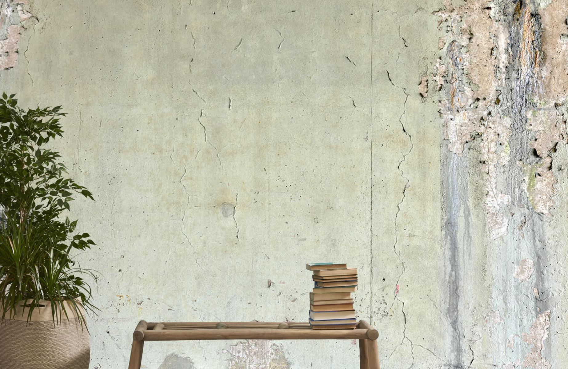 Papier peint aspect concret - Ancien béton - Chambre d'adolescent 20