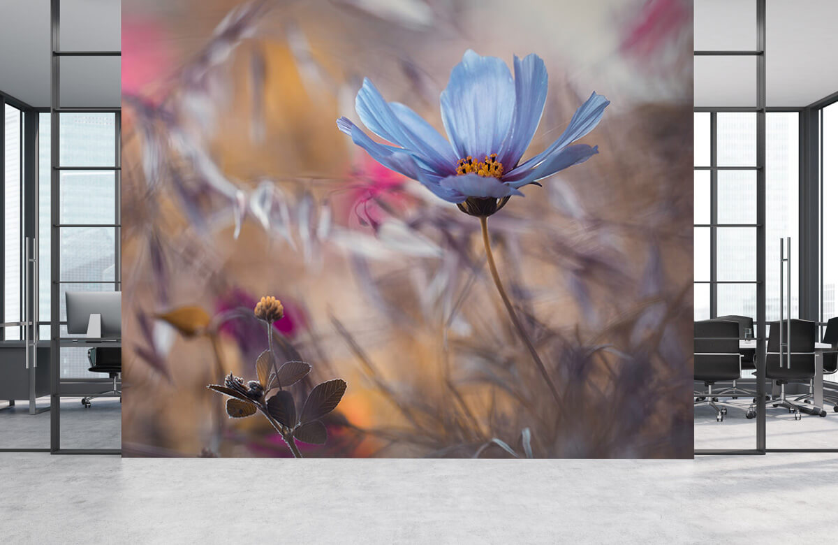 Macro Things that flowers tell 6