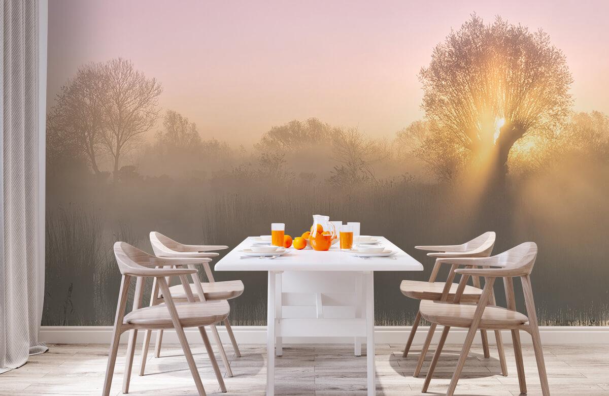 Landscape Silence morning 2