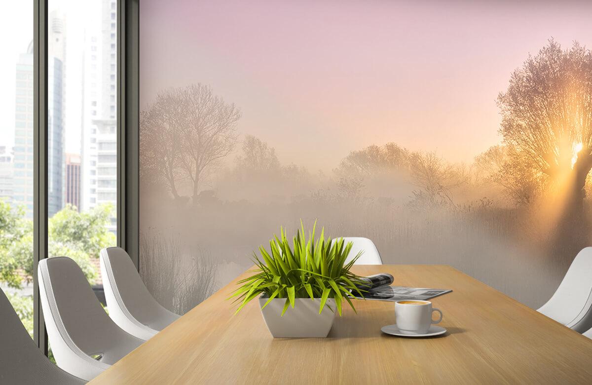 Landscape Silence morning 4