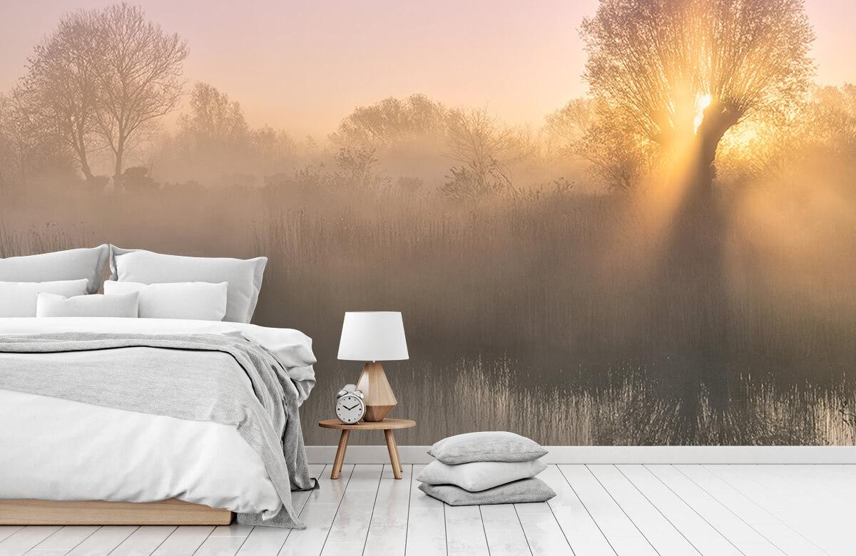 Landscape Silence morning 10