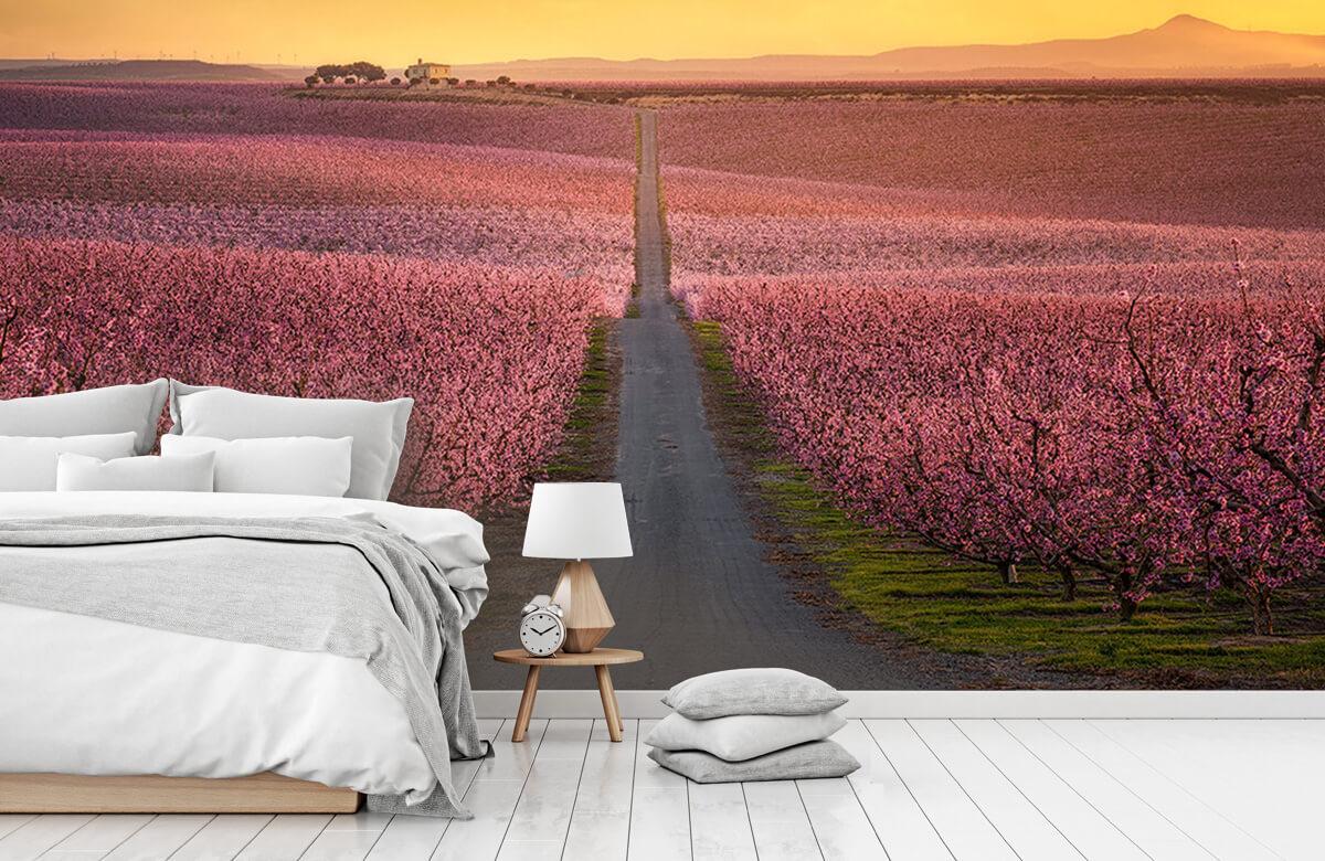 Landscape Flowering 10