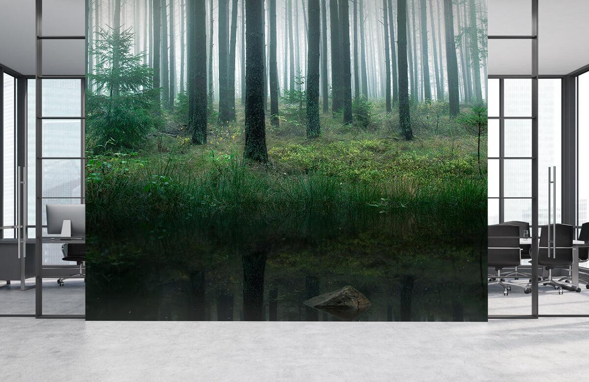 Landscape Lake in forest 7