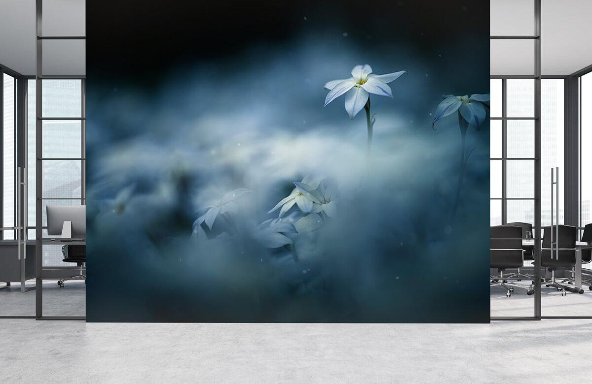 Macro Spring glow 7