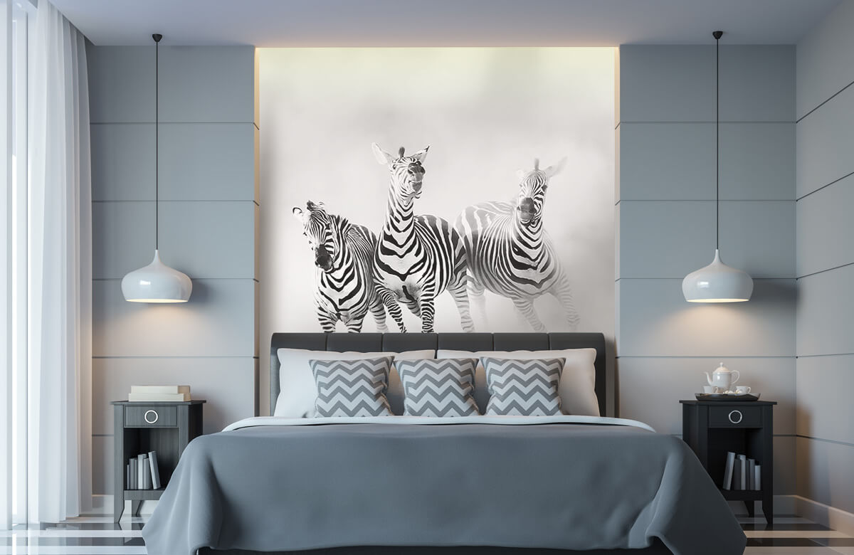 Wilde dieren Zebras 4
