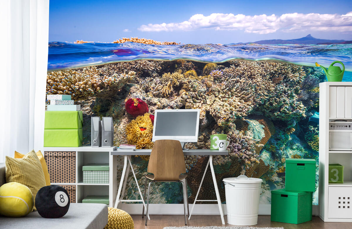 Underwater Mayotte : The Reef 3