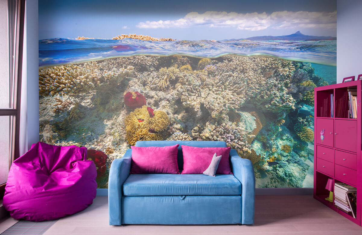 Underwater Mayotte : The Reef 11