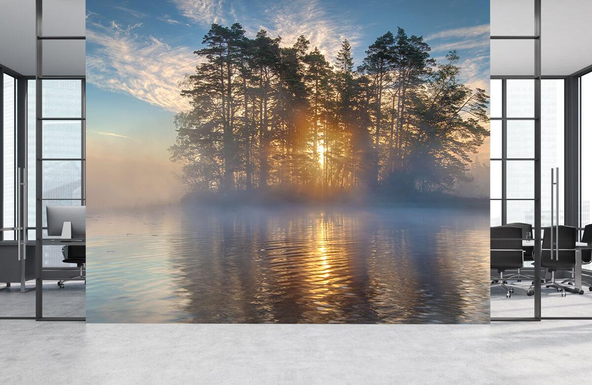 Landscape Morning light 8