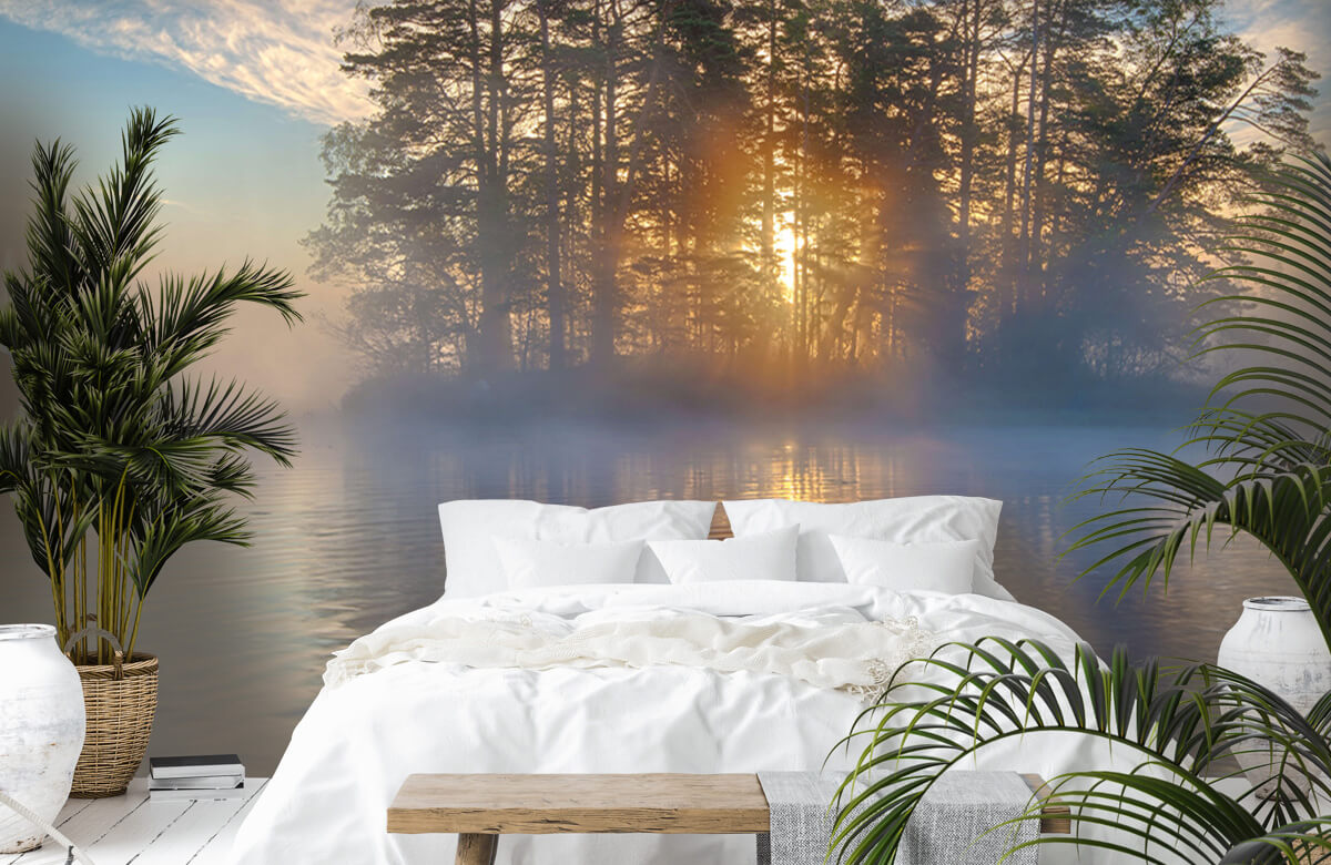 Landscape Morning light 1
