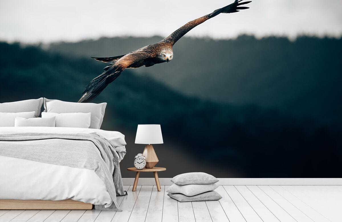 Wallpaper Cerf-volant rouge 10