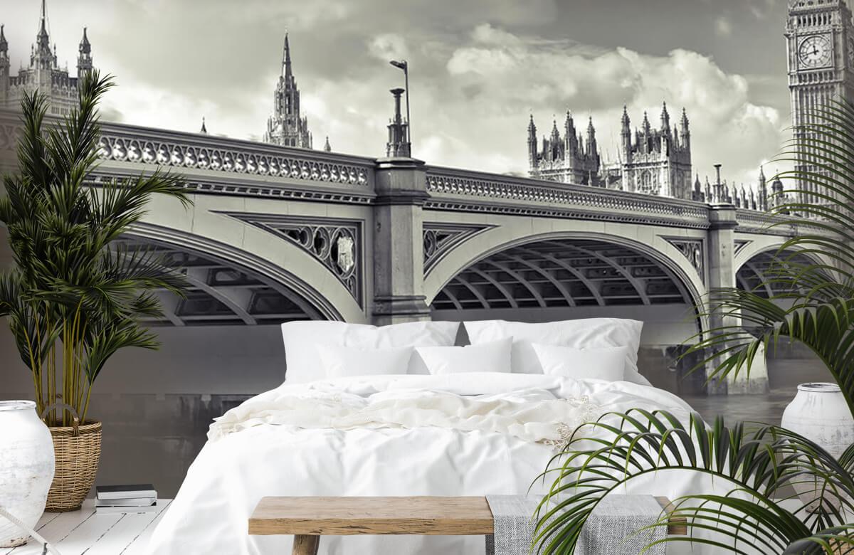 Pont de Westminster 5