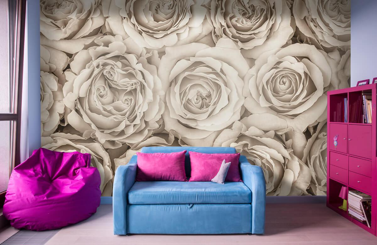Historique des roses 2