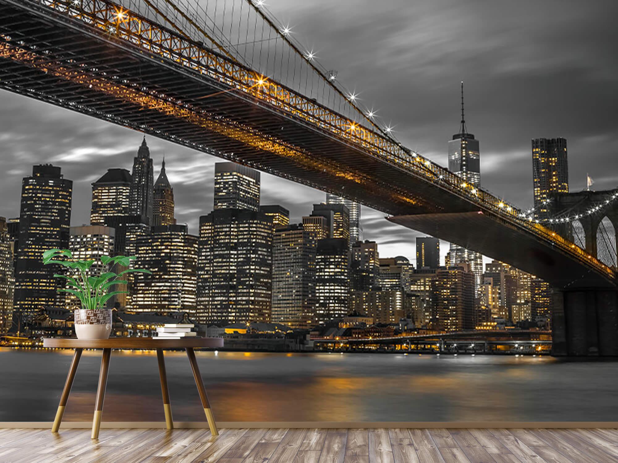 Pont de Brooklyn, New York 6