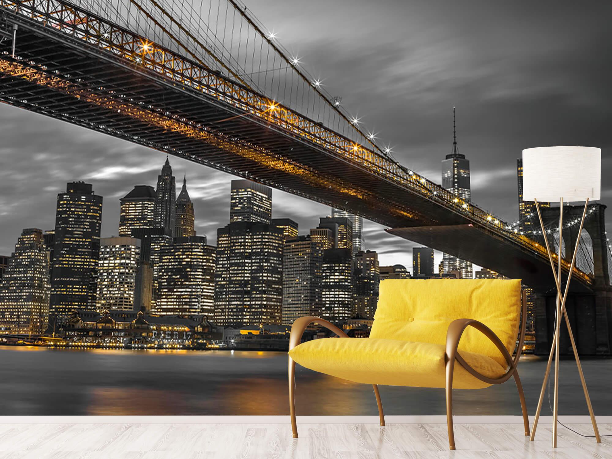 Pont de Brooklyn, New York 2