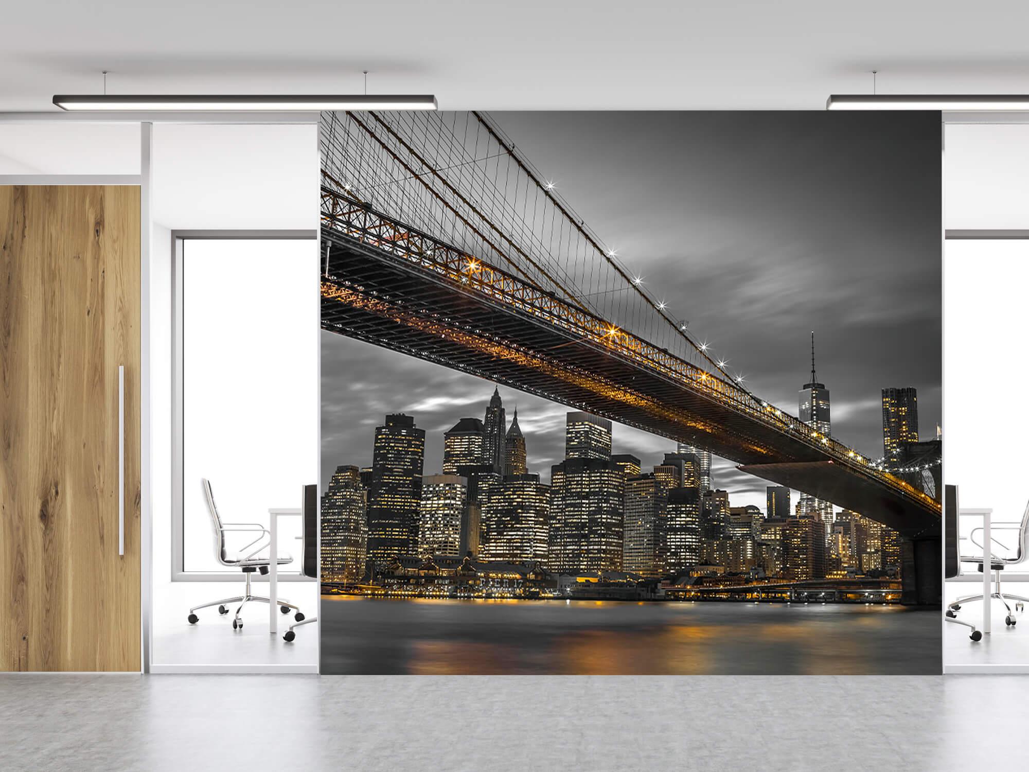 Pont de Brooklyn, New York 5